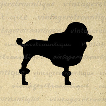 Poodle Dog Silhouette Graphic Image Printable Digital Illustration Download Antique Clip Art for Transfers Printing etc HQ 300dpi No.2131