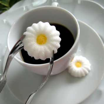 Simple Daisy Shaped Sugar Cubes 3 Dozen to Serve With Coffee or Tea