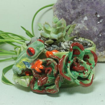 Red Eye tree frog succulent planter  mini hand sculpted pottery planter