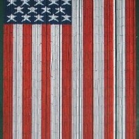American Flag Beaded Curtain 125 Strands (+hanging hardware)