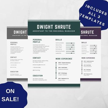 Professional Resume Template 07, CV Template for MS Word, Creative Resume, Modern Resume Design, Resume Instant Download 3 versions SALE!