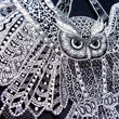 Owl Decorative plate Glass painting Point-to-point