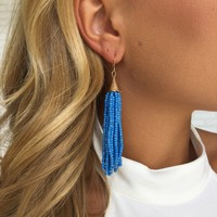 Blue Bead Dangle Earrings
