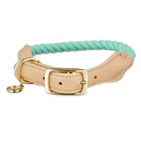 Bond & Co. Turquoise & Buff Rope Collar | Petco Store