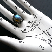 Poseidon's Garden Ring - Labradorite and Sterling Silver