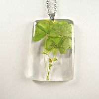 Yellow Wood Sorrel (Oxalis stricta) Botany Resin Pendant, Wild Herb Necklace, Preserved Specimen Floral Jewelry