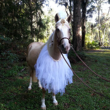 Good Princess Ballerina Horse Costume - Tutu Equine Costume - Snow Princess Halloween Costume for Horses Bridal Costume