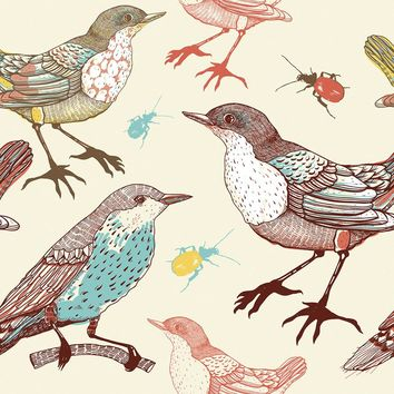 Birds and Beetles