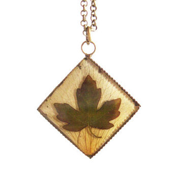 Real leaf necklace - Tiny field maple leaf on yellow rose petal - Spring leaf jewelry - Nature inspired necklace - Botanical pendant