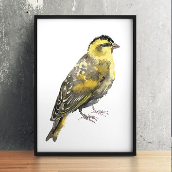 Nursery art Cute bird watercolor Siskin print ACW121