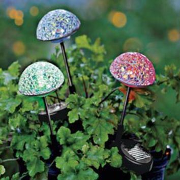 Solar Mirrored Mosaic Mushroom Lights, Solar Lighting, Outdoor Lighting | Solutions