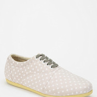 Study Footwear Polka Dot Canvas Sneaker
