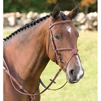 Vespucci Fancy Raised Figure 8 Bridle | Dover Saddlery