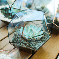 Large Glass geometric terrarium - Handmade Geometric Terrarium - Glass Dodecahedron - Glass Planter- Home decor - Wedding table decor