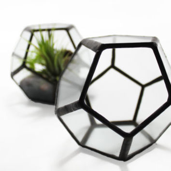 Dodecahedron Terrarium - for air plant or succulent garden - Stained Glass