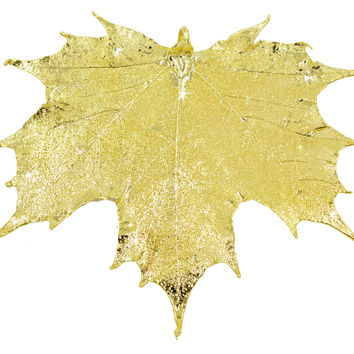 "Real Leaf Christmas ORNAMENT Sugar Maple 4"" Dipped in 24K Yellow Gold"