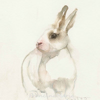 Rabbit Watercolor Painting Art Animal White  Bunny aquarel Giclee A4 Print Pet Alice in wonderland