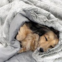 Silver Tipped Winter White Faux Fur - Snuggle Sack - Dog Bed - Includes Embroidered Personalization