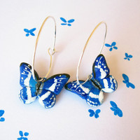 Butterfly earrings blue and white hand painted by FlowerLandShop