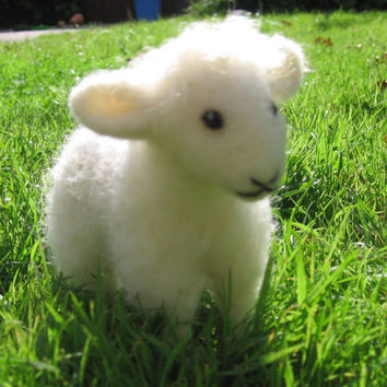 Needle felted lamb. Needlefelt sheep. Handmade. Soft sculpture. Sweet white lamb. Needlefelted lamb.
