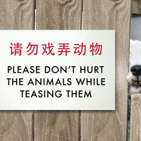 Novelty Animal Sign. Funny Chinglish Signage for Dogs, Cats & other Pets. Cute Kids Decor. Don't hurt the animals while teasing them