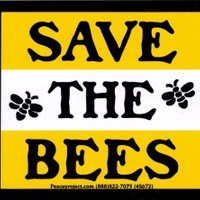 """Save the Bees - Bumper Sticker / Decal (4"""" X 3.5"""")"""