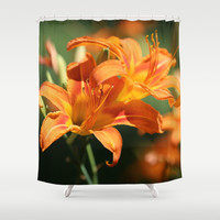 Day Lily Dance Shower Curtain by Theresa Campbell D'August Art