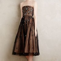 Neoma Tulle Dress