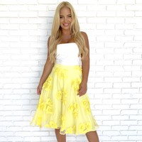May Yellow  Embroider Skirt