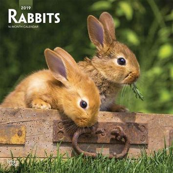 Rabbits Wall Calendar, Small Pets by BrownTrout
