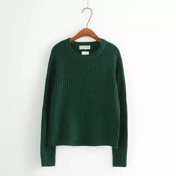 Casual Plain Knitted Sweater B0013908