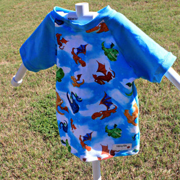 Dragon Raglan T-shirt size 2T, short sleeve shirt with dragons, toddler clothing