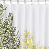 fan coral shower curtain in shower curtains | CB2