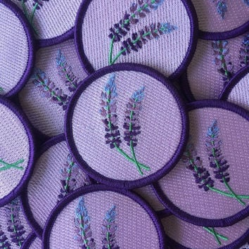 Lupine Patch