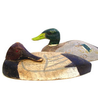 Vintage Duck Decoy Wood Folk Art Canvas Back Rustic Painted Carved Wooden Sleeper Decoy Ackerman 1960s