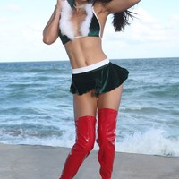 Sexy Santa Skirt Set Christmas Costume-Stripper Clothing