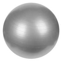 Sunny Health & Fitness Anti-Burst Gym Ball, 65 CM