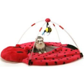Marshall Bed Bug Play Center for Ferrets