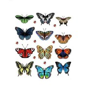 Butterfly Animal Wall Stickers