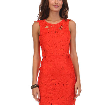 Follow Your Heart Red Lace Dress - Lucky Duck Boutique