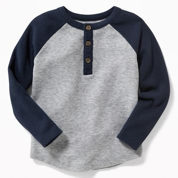 Color-Blocked Thermal Henley for Toddler Boys |old-navy