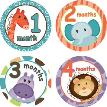 Monthly Baby Stickers Safari Animals Purple Blue Bodysuit Stickers Monthly Baby Stickers Baby Shower Gift Photo Prop Baby Milestone Stickers