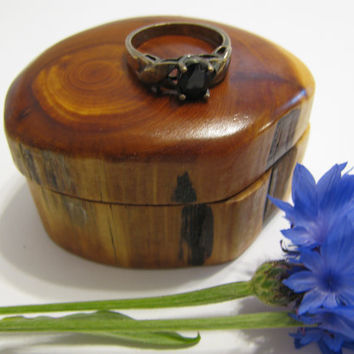 Wood ring box Tooth Fairy box made from a length of dead standing juniper and rare earth magnets.
