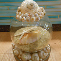 Beach Decor Seashell and Sand Globe  Coastal Snow by LiveCoastal