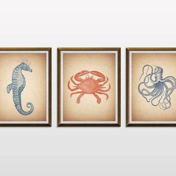 Sea Life Wall Decor, Nautical Decor, Nautical Nursery, Nautical Art, Nautical Prints, Bathroom Decor, Vintage Illustration, Scientific