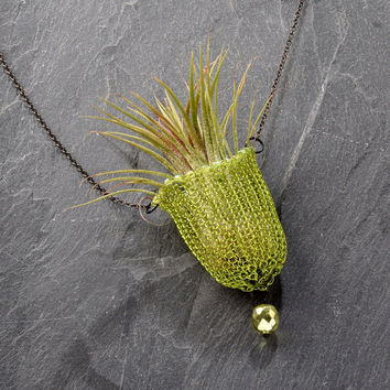 Air Plant Necklace - Wearable Air Plant Holder, Wire Crochet Beaded Necklace, Living Jewelry