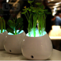 Fake PU Plants Night Light LED lights controlled Bedroom lights decorative plant