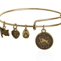 Alex and Ani style 12 constellation Bracelet,Aries pattern pendant charm bracelet