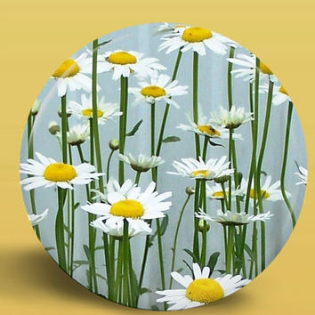 Springtime Daisies - PHOTO BUTTON MAGNET - 2.25 Inch Round