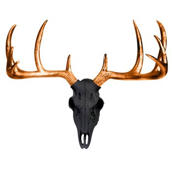 Mini Deer Head Skull | Faux Taxidermy | Black + Bronze Antlers Resin